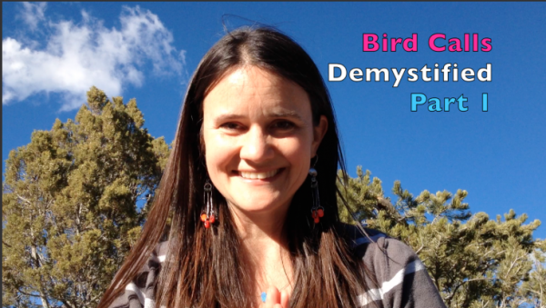 Bird Calls Demystified – Part 1