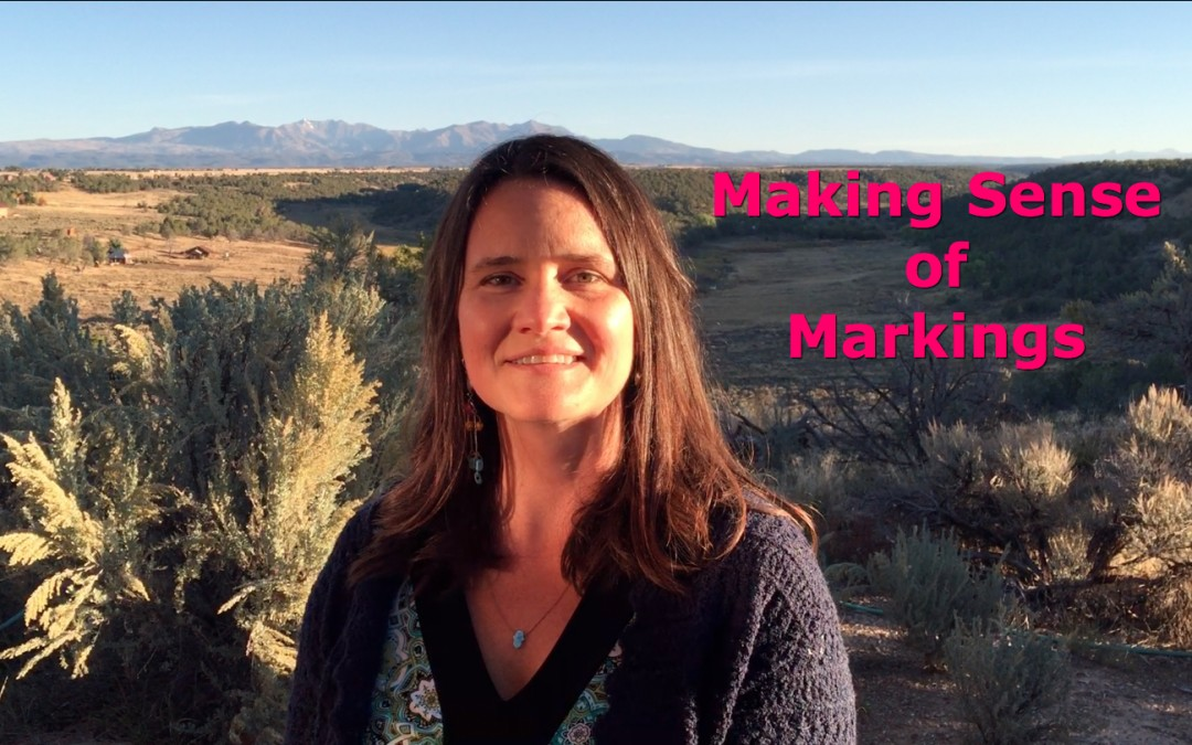 Making Sense of Markings