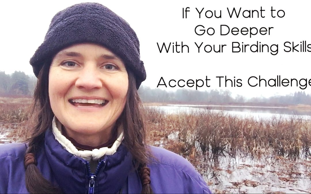If You Want to Go Deeper With Your Birding Skills, Accept This Challenge
